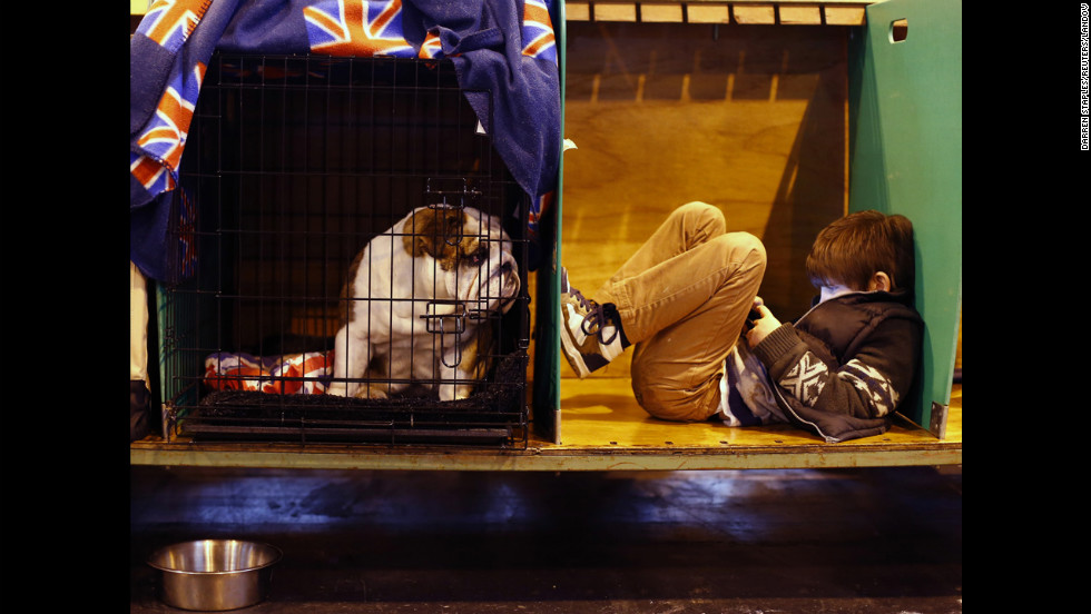 A boy relaxes with a bulldog on March 8.