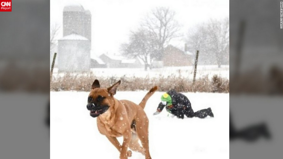 "<a href=""http://ireport.cnn.com/docs/DOC-938115"">Lyndsey Harn </a>of Frankfort, Illinois, spent her snow day with her son Dashiel and their Bandog Mastiff, Kola, playing in the snow. School was canceled that day and ""the boys wanted to play in the snow,"" she said. ""My favorite part about the snow day was seeing my son so happy to play in it."""