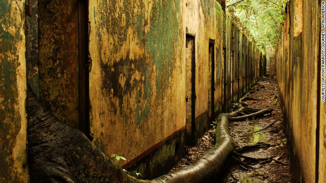 The jungle encroaches upon the abandoned cells on Ile St. Joseph, French Guiana.