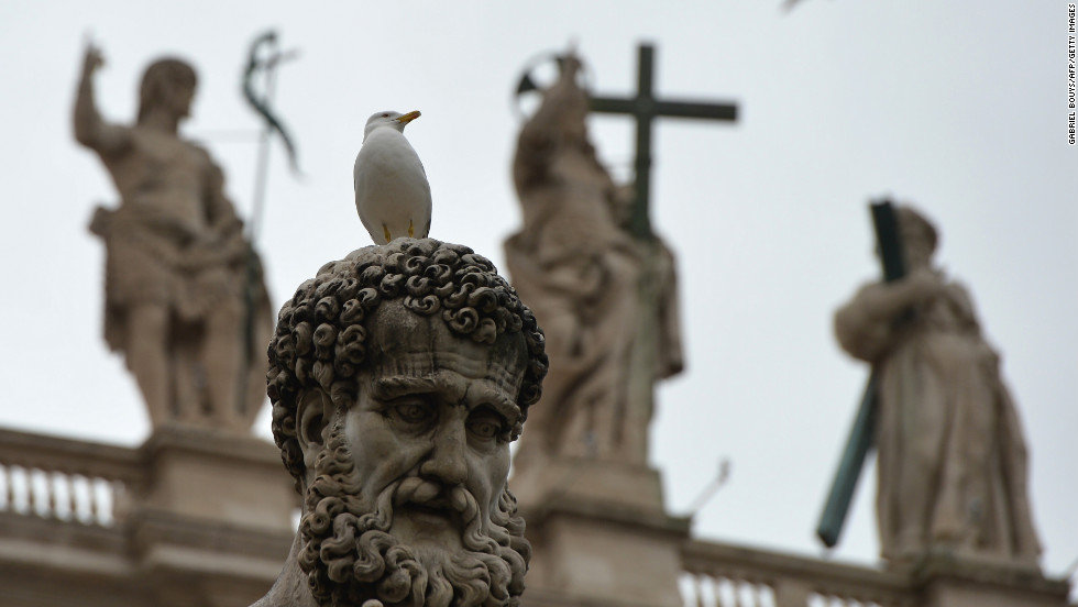 A seagull perches on a statue in St. Peter's Square on March 13.