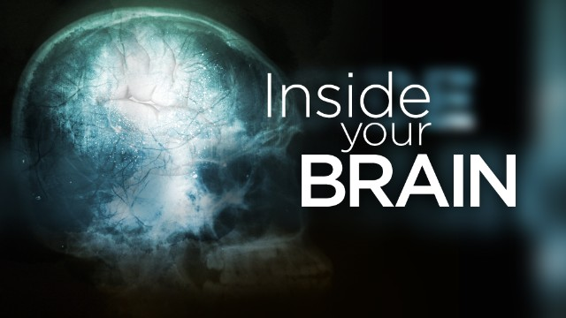 "This is a part of CNN Health's ""Inside Your Brain"" series."