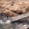 makoko nigeria sewage