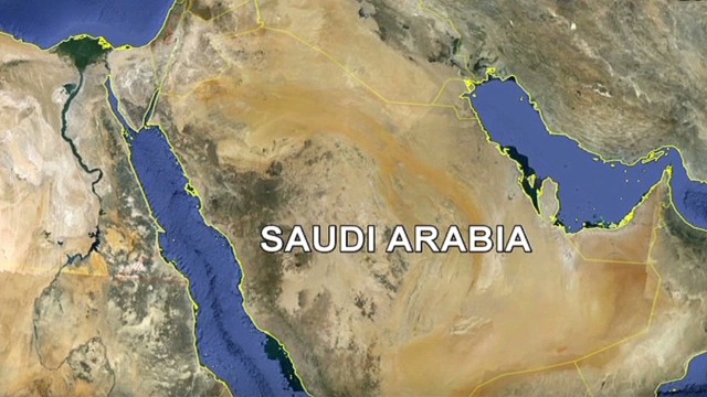 Reports: Saudi sentenced with paralysis