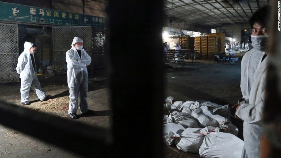 Health workers gather dead chickens at the Huhai poultry wholesale market, where the H7N9 bird flu virus was detected in pigeon samples, in Shanghai on April 5.