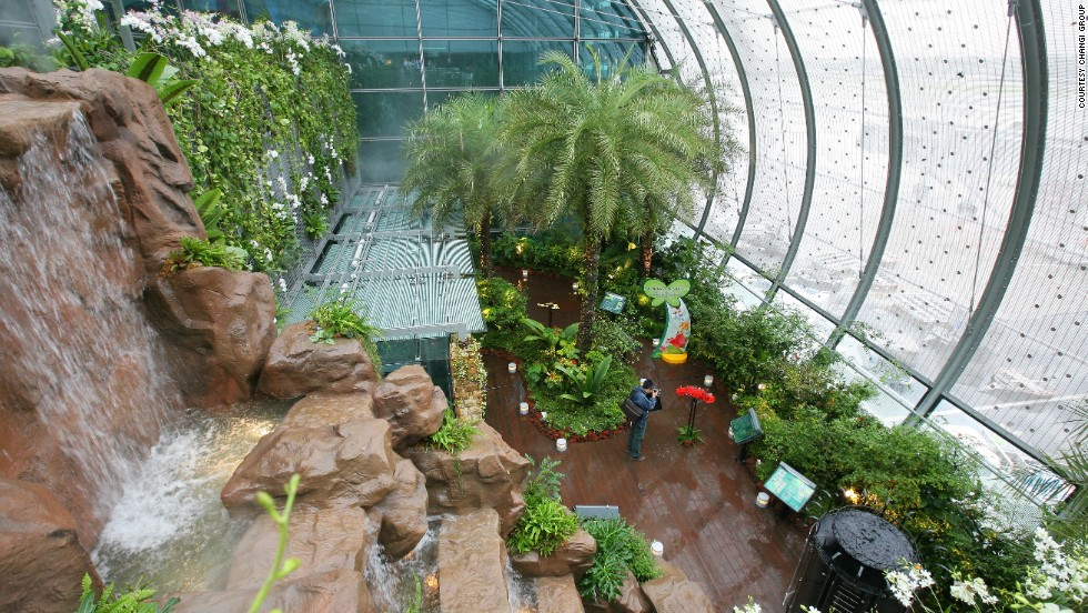 The airport butterfly garden is a big draw. Travelers are free to wander amid plants and waterfall installations while examining a variety of colorful butterfly species.