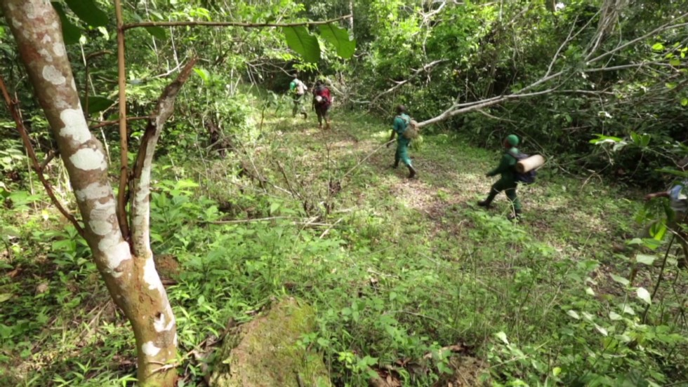 Environmentalists and park rangers patrol Cameroon's Lobeke National Park as part of efforts to deter poaching and arrest illegal hunters.