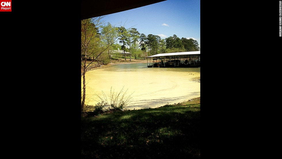 "Melissa Blankenberg took this photo at Lake Wylie in South Carolina and posted it to Twitter. ""The yellow blanket means to me springtime has arrived and summer is around the corner,"" she says."