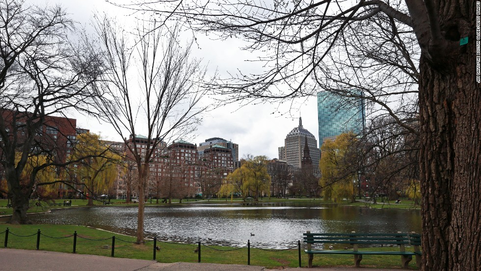 The Boston Public Garden