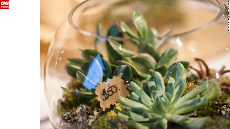 "Melissa Hamburg-Hamby of Seattle is an interior designer. She says she started <a href=""http://ireport.cnn.com/docs/DOC-959893"">making terrariums</a> as a form of stress relief and has now made more than 100."