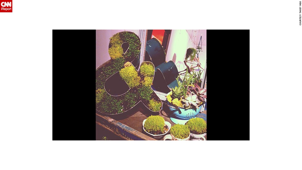 "Thoey Ngo of San Jose, California, runs a boutique shop that sells handmade housing products, and an artist makes green succulent arrangements for her. She says a neighbor <a href=""http://ireport.cnn.com/docs/DOC-959174"">gave her some old signs</a> to ""upcycle"" or reuse for this artistic purpose. This photo has been filtered with Instagram."
