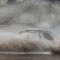 06 mw flooding 0423
