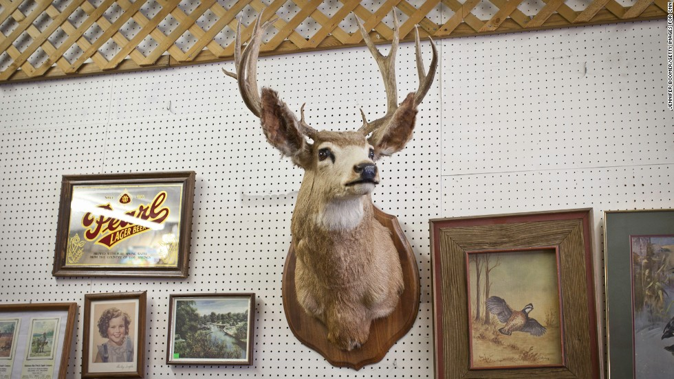 Edward Havel's Czech Point is a collection of garage-sale finds, auction treasures and good old American kitsch.