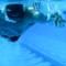 Fit Nation FL Will swim underwater