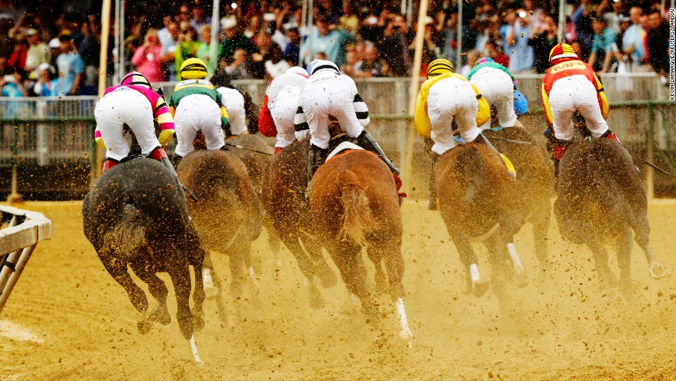 Horses and jockeys vie for position during the race.