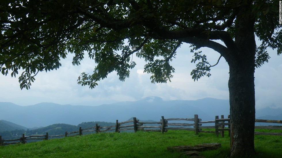 "Don't oversleep on the day you visit <a href=""http://www.nps.gov/grsm/planyourvisit/cadescove.htm"" target=""_blank"">Cades Cove</a>. Right after sunrise is Worth's favorite time to see active wildlife there."