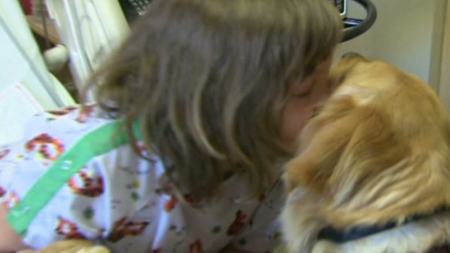 Comfort dogs: The calm after the storm