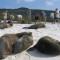 best beaches-18 gardnerbay galapagos