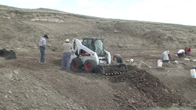 Triceratops remains unearthed in Wyoming