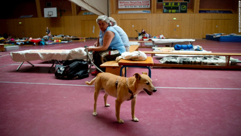 Residents and their pets take refuge from the flooding in a shelter in Bitterfield, Germany, on June 6.