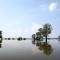 03 euro floods 0612