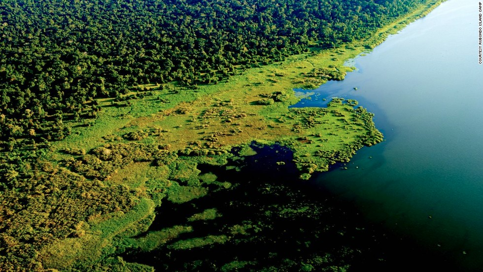 Rubondo is Tanzania's only island national park.