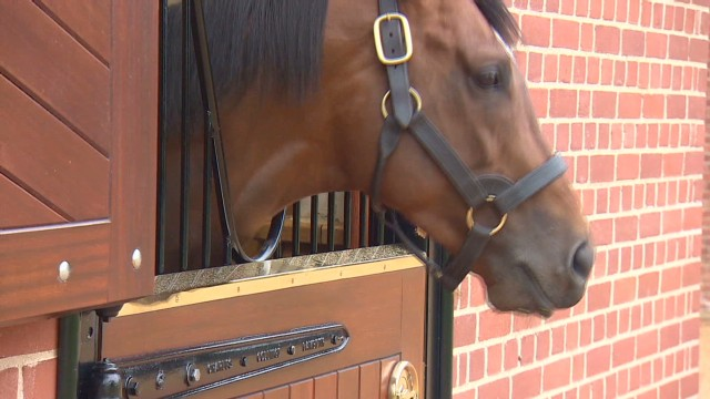 Frankel: Super freak to super stud?