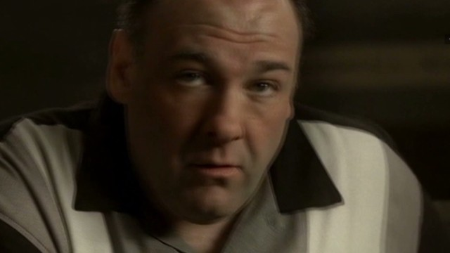 So long, Tony Soprano