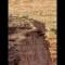 05 wallenda grand canyon