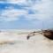 zanzibar-low tide