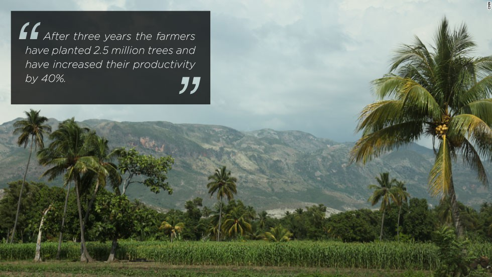 The Smallholder Farmers Alliance is an oasis of green planted by members whose aim is to plant one million trees a year.