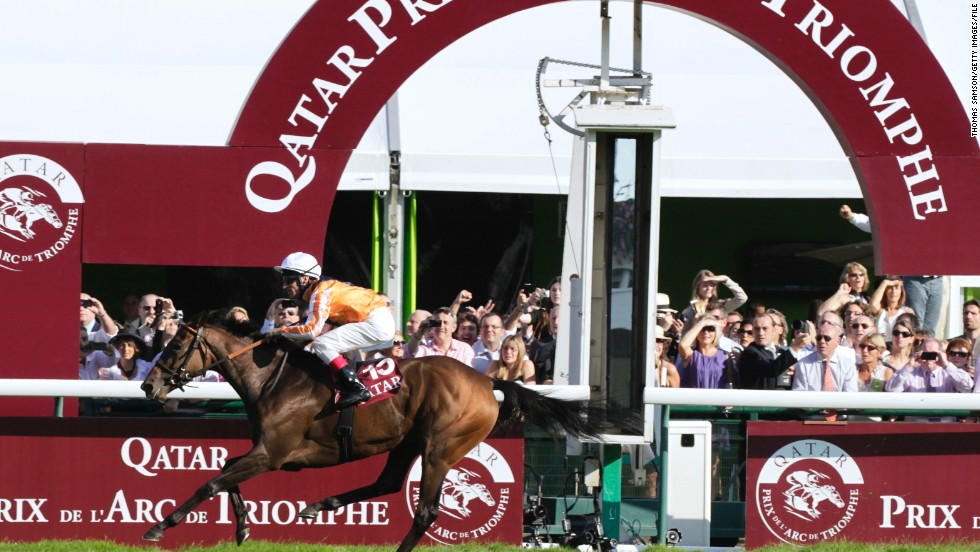 """At the top level it does take a special filly to beat the boys,"" said British Horse Racing Authority spokesman, Paul Rogers. ""Having said that, there's been some fantastic female horses recently, such as Black Caviar and Danedream,"" he added, referring to the German horse which won the Prix de L'Arc Triomphe in 2011 (pictured)."