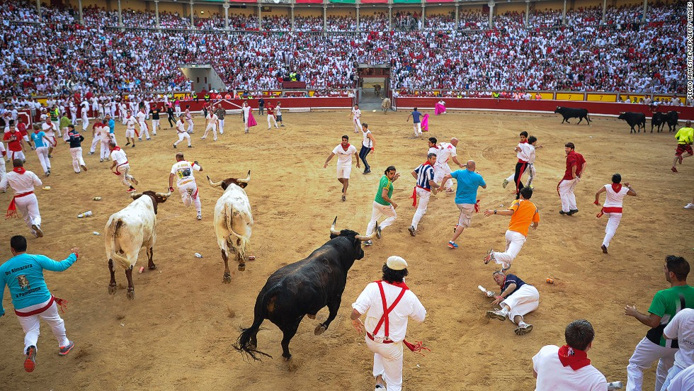 Once inside the bull ring, the animals face matadors in afternoon bullfights. The bulls will almost certainly meet their deaths in the ring.