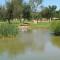 golf course africa-windhoek