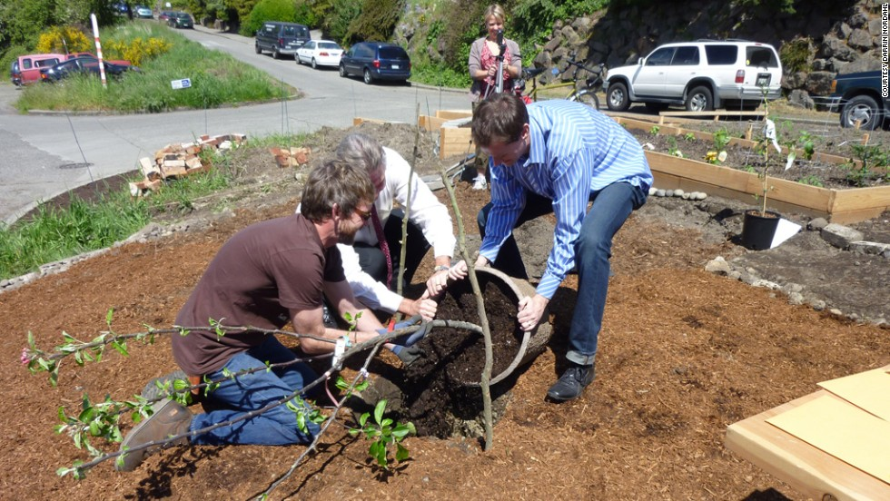 City official Larry Phillips and author and community activist Darrin Nordahl plant an apple tree in a street median in Seattle. The city will soon be home to America's first garden oasis.