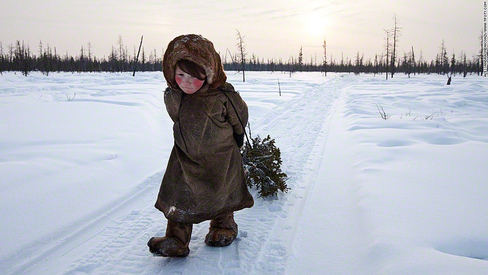 "Siberia, Russia: young Nenet girl collects wood in the forest; Alessandra Meniconzi, Switzerland; winner, New Talent award. A self-taught, semi-professional photographer, Meniconzi's portfolio mixed ""gritty reality with great beauty,"" the judges said."