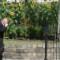 richard reynolds guerrilla gardening 3 alt