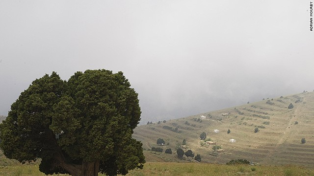 Things might be slightly ramshackle in the Beqaa Valley, but its attractions are world class.