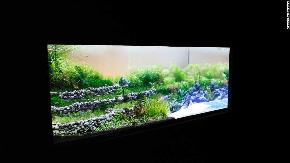 This 1.5-meter-long, 80-centimeter-deep tank portrays a landscape of rice field terraces.