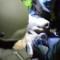 05 Tsarnaev capture