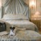 dog hotel-le meurice
