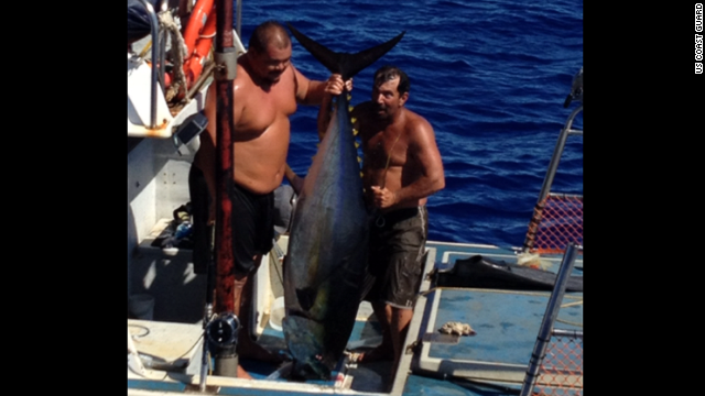 Massive tuna capsizes fisherman's boat