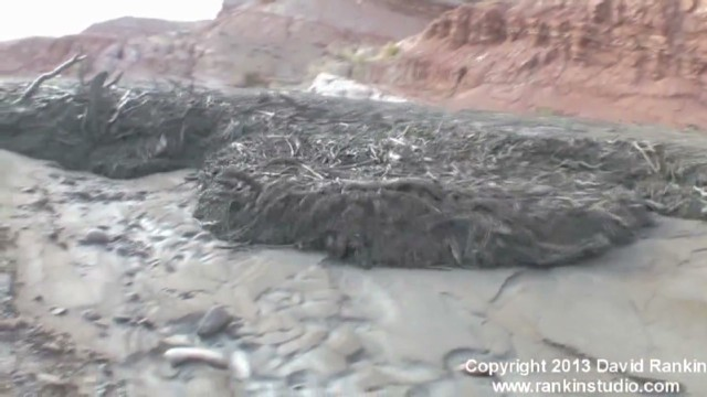 raw utah debris flow flash flood_00001123.jpg
