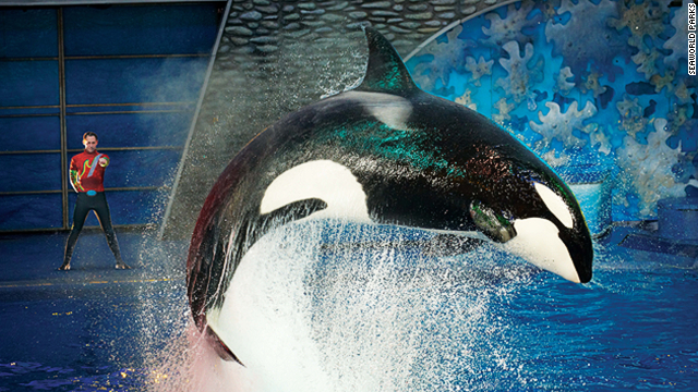 Private SeaWorld tours guarantee close encounters.