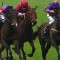 Royal horses12