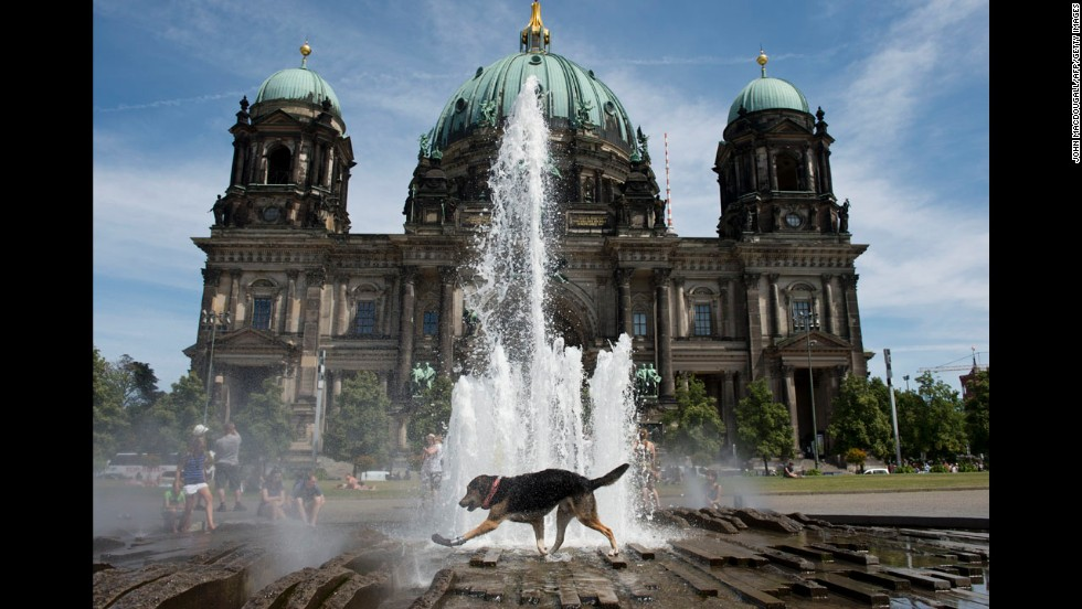 One hot dog cooled down in a fountain in Berlin's Lustgarten.