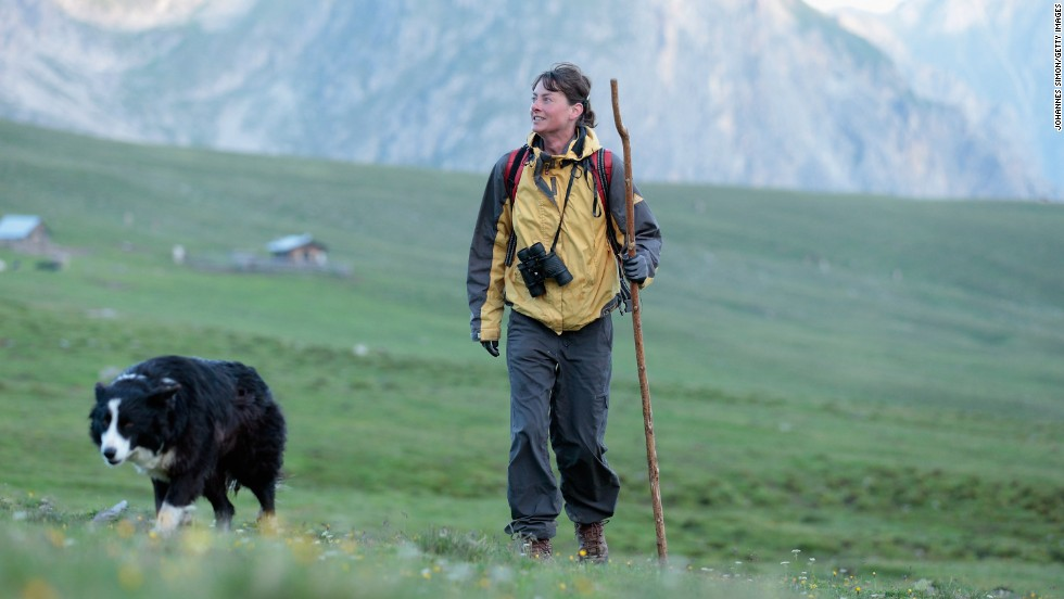 One herding dog worked a field with its master in the Swiss Alps.