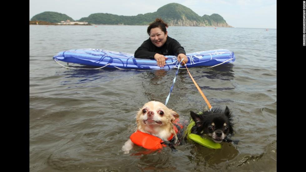 A pair swam at Takeno Beach in Toyooka, Japan.