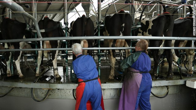 China halts milk from New Zealand