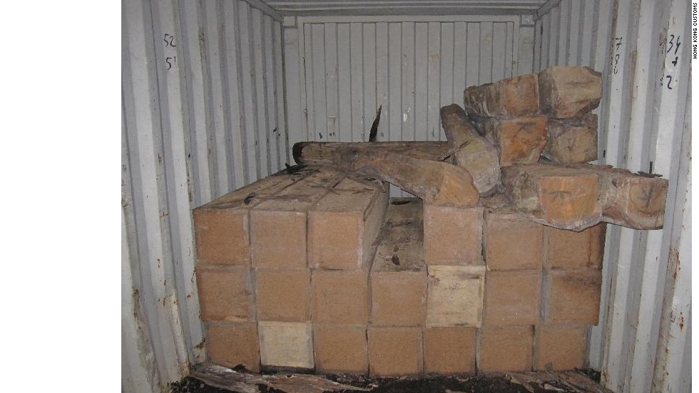 In Hong Kong's August 6 animal goods seizure, wooden crates located at the rear of a container held ivory tusks, rhino horns and leopard pelts.