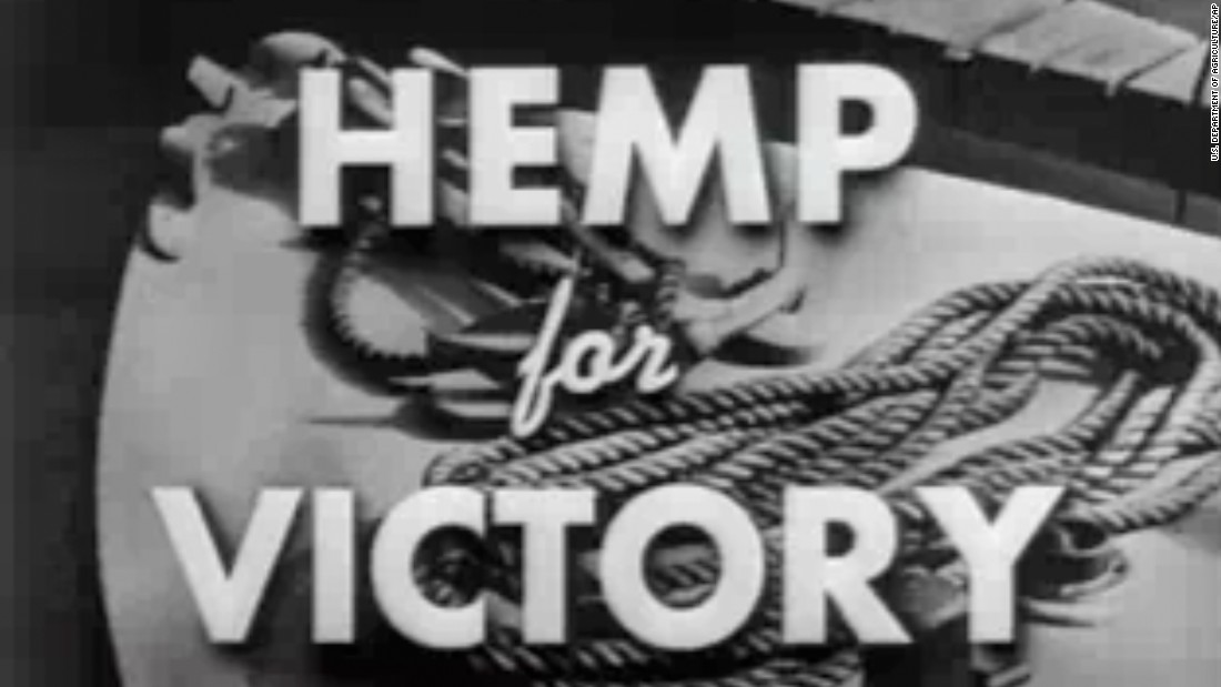 "Even after Congress cracked down on marijuana in 1937, farmers were encouraged to grow the crop for rope, sails and parachutes during World War II. The ""Hemp for Victory"" film was released in 1942 by the U.S. Department of Agriculture."